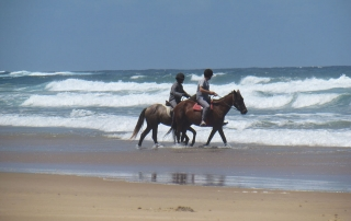 Horse Riding on Beach at Naara Eco-Lodge 1