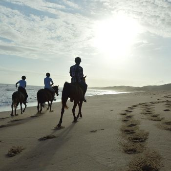 Horse Riding on Beach at Naara Eco-Lodge