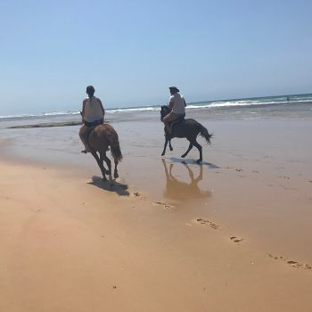 Naara Eco-Lodge Horse Riding 1