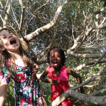Naara Eco-Lodge Kids in Tree