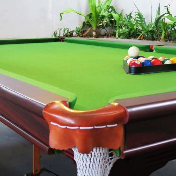 Naara Eco-Lodge Pool Table